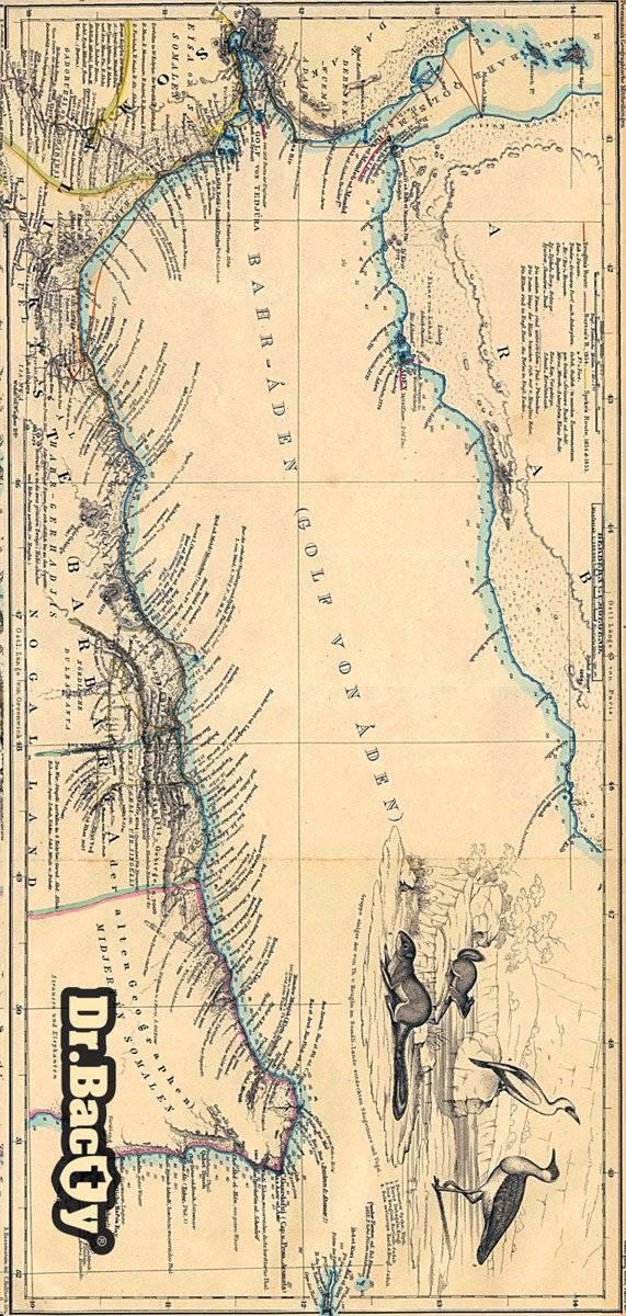 Ręcznik szybkoschnący 70x140 Dr.Bacty - Mapa